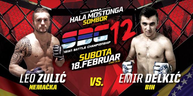 Leo Zulić vs Emir Delkić