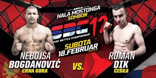 Nebojša Bogdanović vs Roman Dik