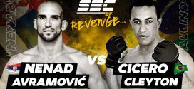 SBC 27 Revenge, Nenad Avramović vs Cicero Cleyton Paulino