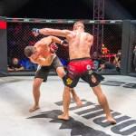 Aleksic_Srdjan_SBC_MMA_BP_2021_MALA_0213