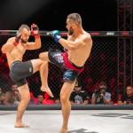 Aleksic_Srdjan_SBC_MMA_BP_2021_MALA_0123